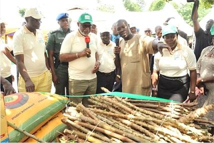Regaining Ondo's strength in agriculture
