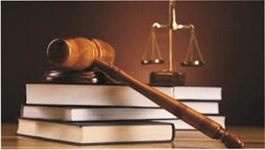 Parental Rights & Obligations