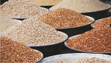 Deadly sniper-treated beans: Matters arising