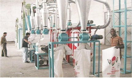 Ondo's giant strides in rice production