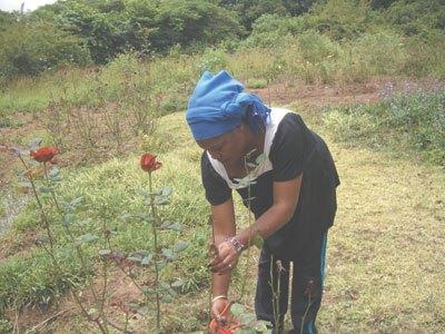 Start planting, expert urges farmers