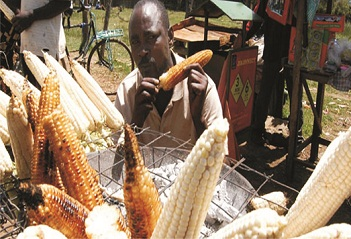 Corn and its tantalising appeals