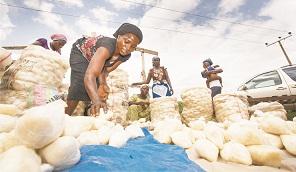 NAFDAC investigates 'poisonous Fufu'
