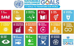 NGO sensitises citizens on achieving devt goals