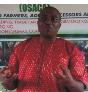 ODSG trains youths on tomato cultivation