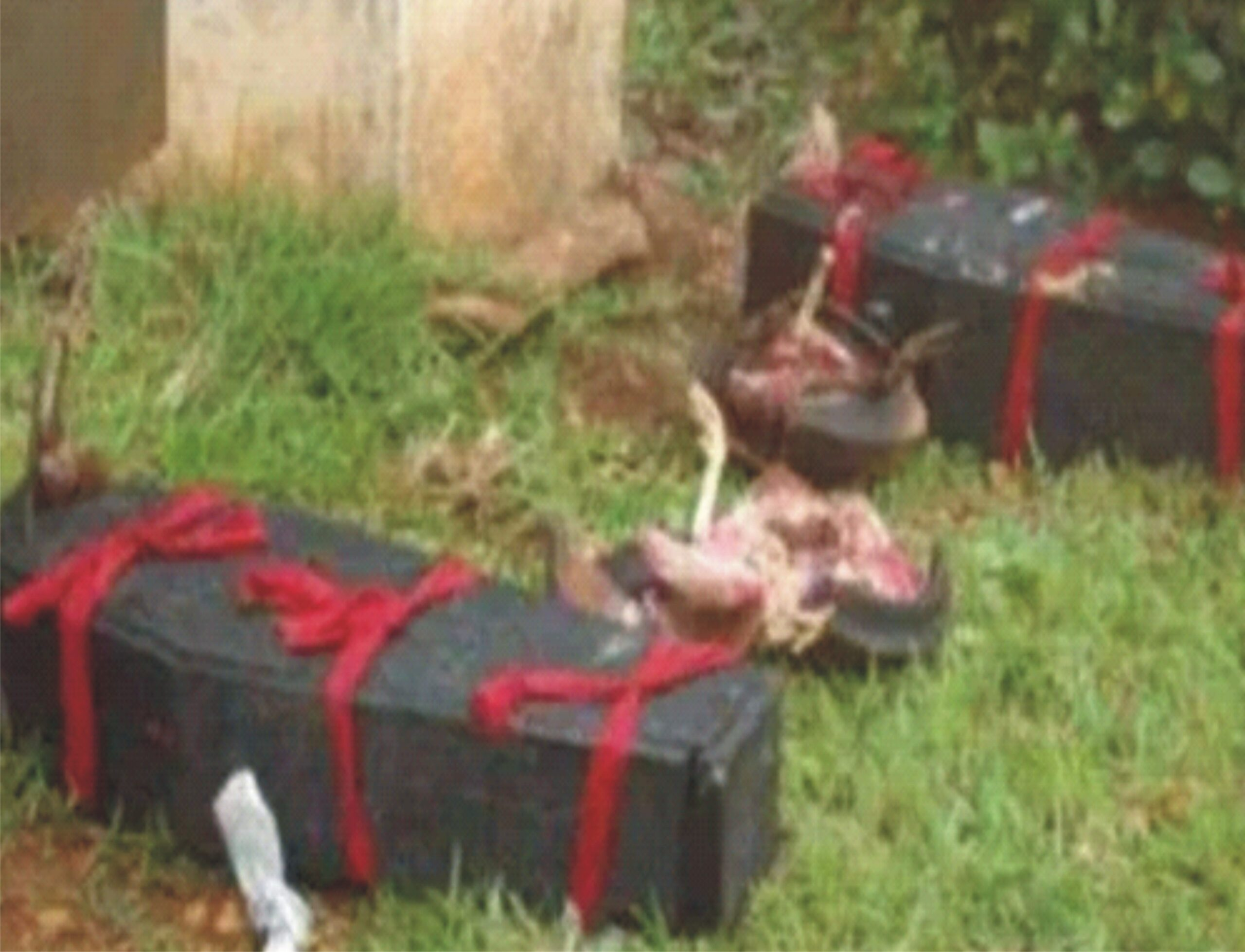 Six 'held' for using  corpse for ritual