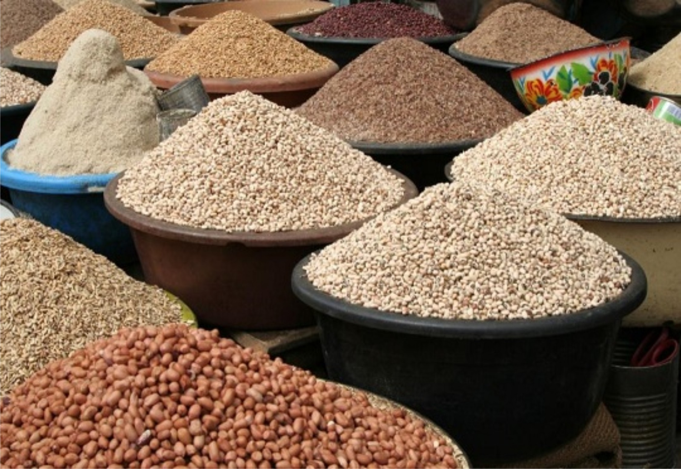 'Nigeria can be world's food basket'